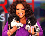 wpid-Oprah-gets-two-dogs1.png