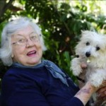 http://inner-west-courier.whereilive.com.au/news/story/new-homes-for-old-dogs-keeps-our-elderly-smiling/